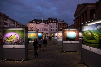 Wild Wonders of Europe exhibition by night