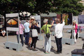 Åbning af Habitat:Aarhus udstillingen på Rådhuspladsen