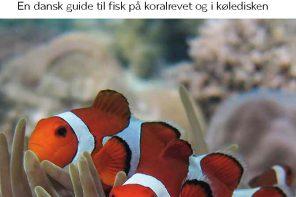 Hvad for en fisk 2016_17x24cm_LOW_Side_01