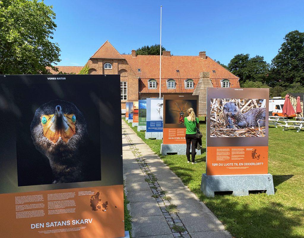 """VORES VILDE VIDUNDERLIGE NATUR"" i Anneberg Kulturpark"